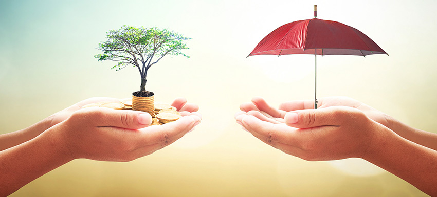 difference between term plan and life insurance