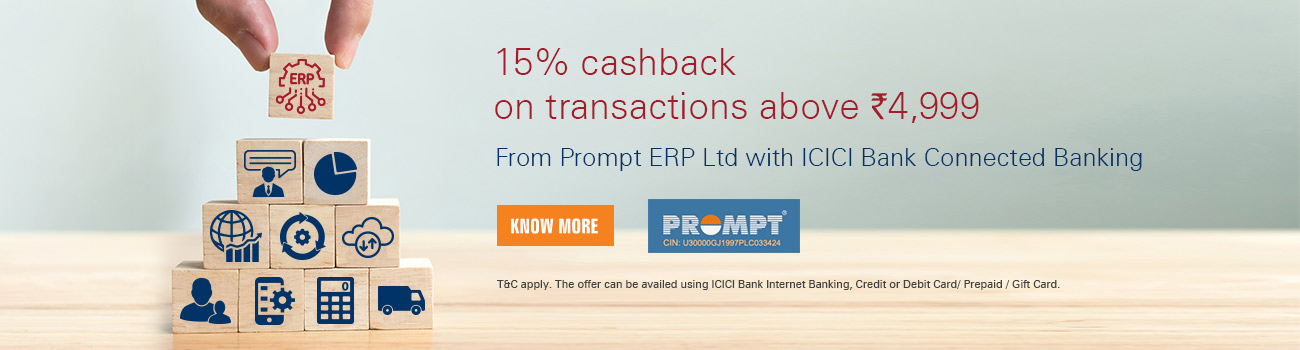 Prompt ERP Offer