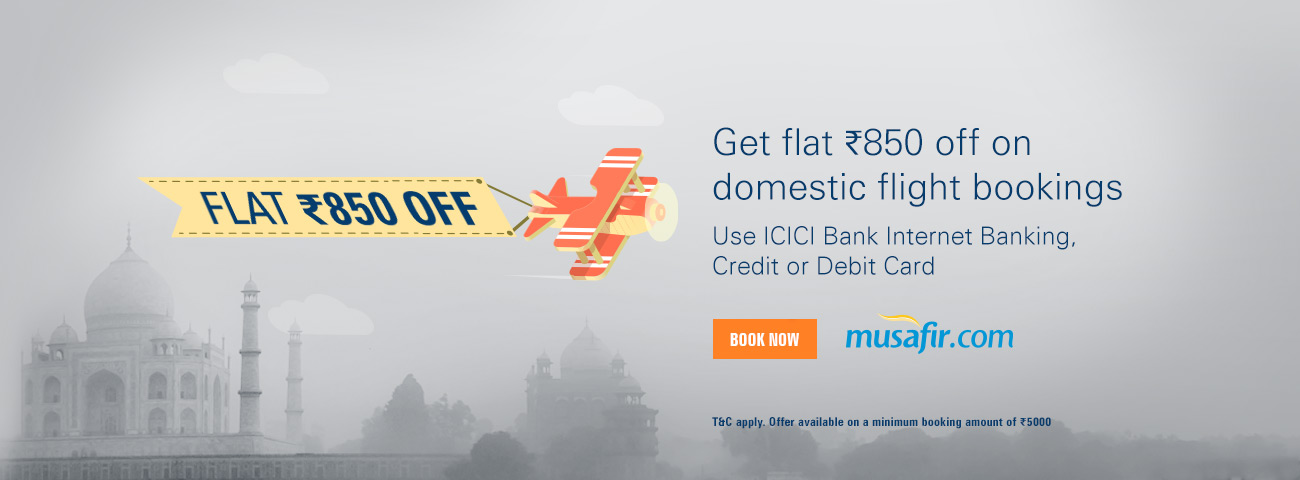 Domestic Flight Offers
