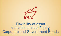 flexibility-of-asset-allocation