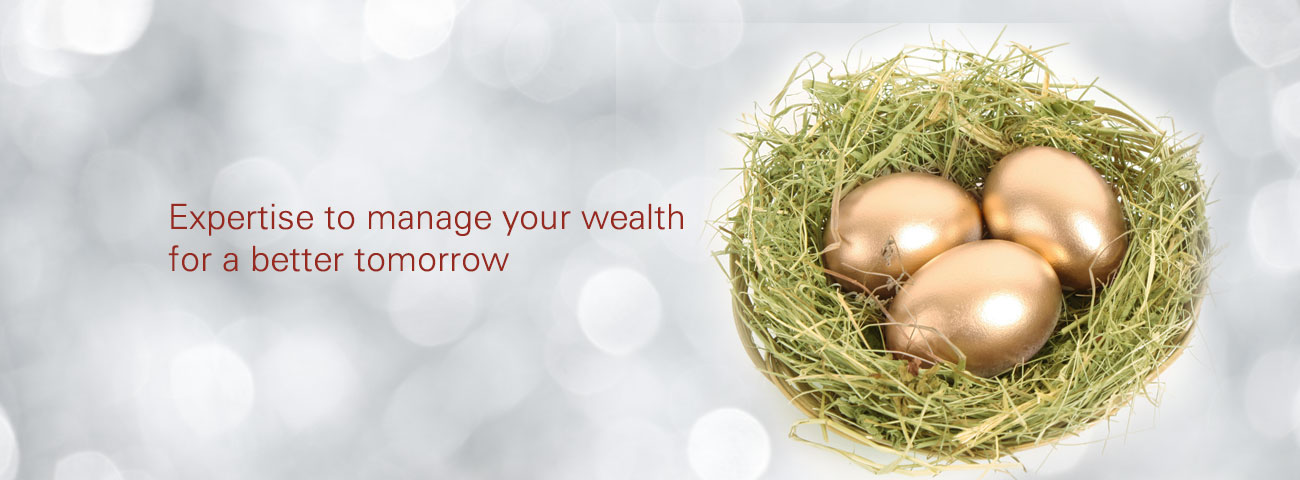 Investment Advice – Wealth Management